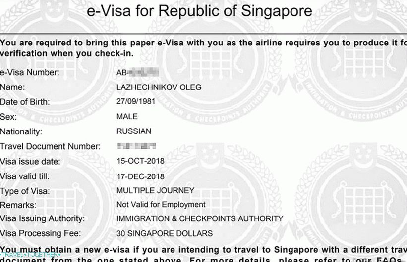 This is how my e-visa to Singapore looks like