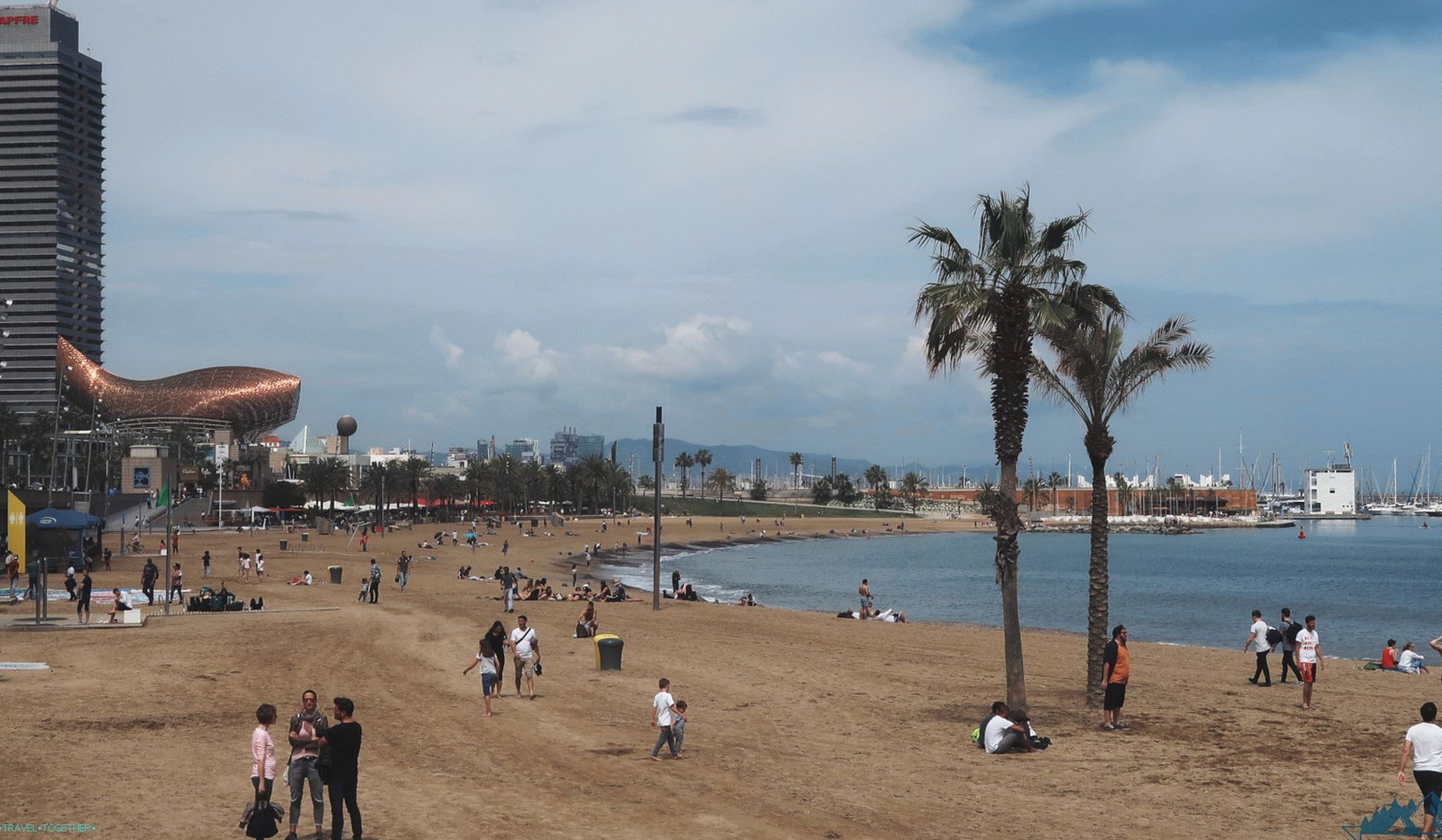 Barcelona,   the beach