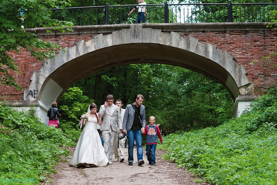 Wedding and arched bridge