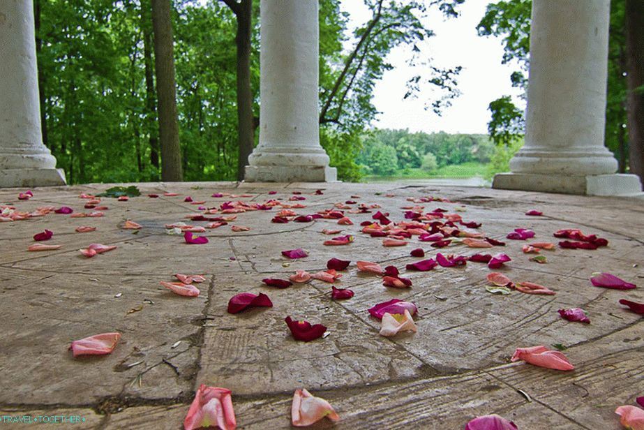 Rose petals in the gazebo after the wedding