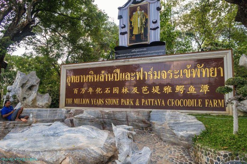 krokodilovaya_ferma_v_pattaje_i_park_millionoletnih_kamnej_moi_vpechatleniya_lt